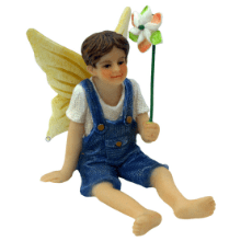 Boy Fairy James