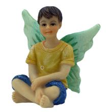 Boy Fairy Liam