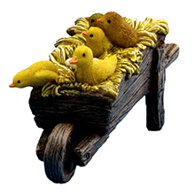 ducklings and chicks