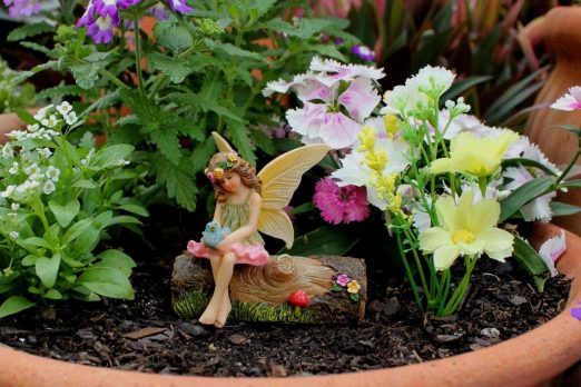 Fairy Vicky on Stump 3