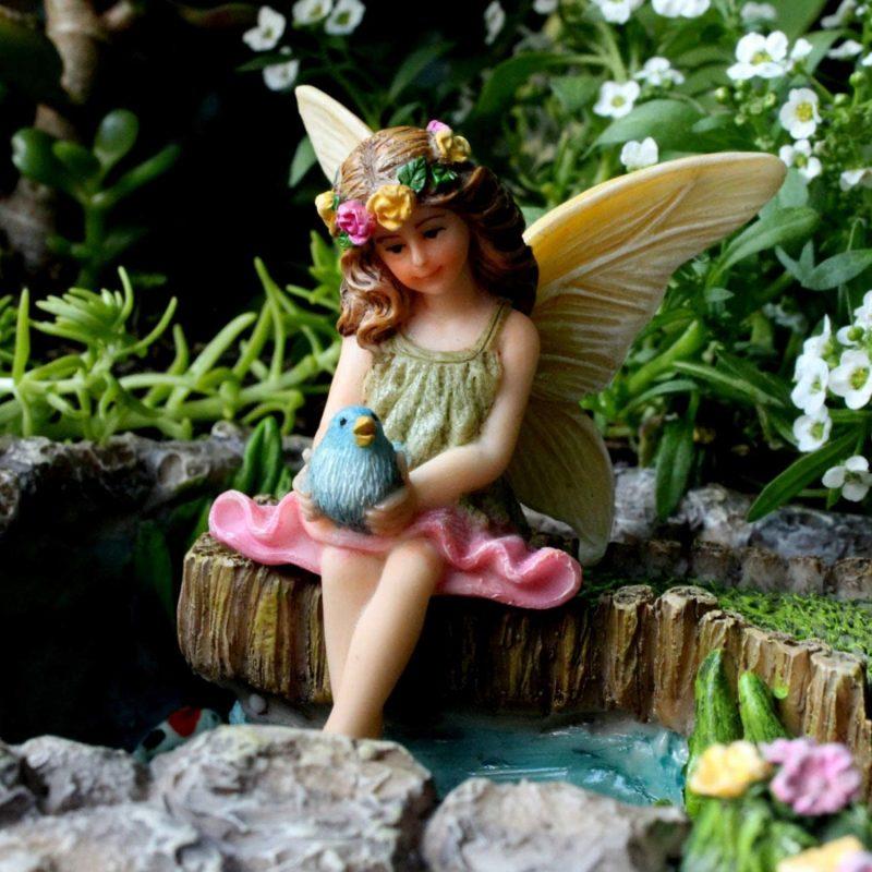 Fairy Vicky on Stump 4
